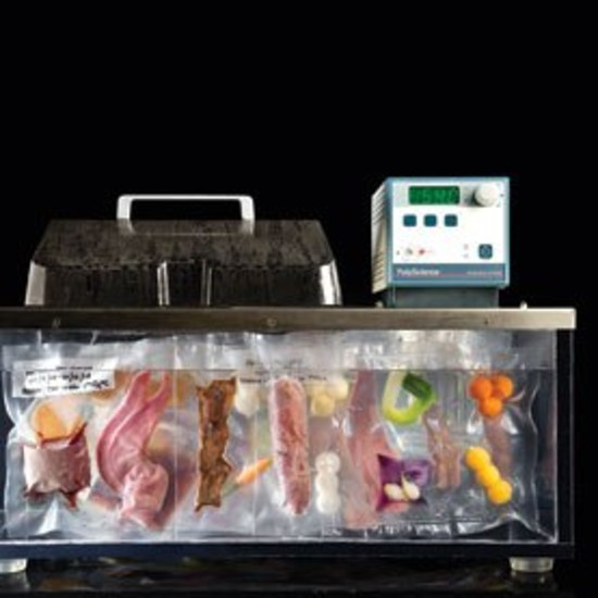 fusion chef sous vide manual