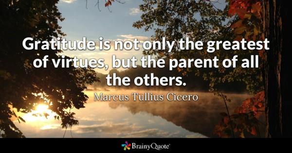 pride foster parent training manual
